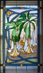 Datura Vines Window by Ellygator