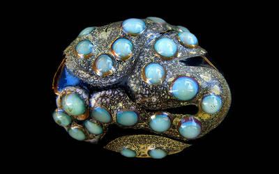 Opal River Desktop by Ellygator