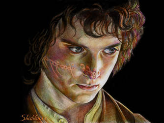Elijah Wood as Frodo by Shishkina