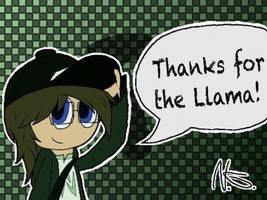 Pryexel say thank you! (Llama) by Pryexel48