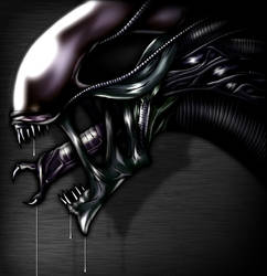 Xenomorph by CerberusLives