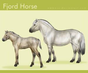 Fjord Horse by EmmaVZ