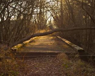 Abandon Tracks by mullet88