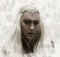 King Of Mirkwood by LindaMarieAnson