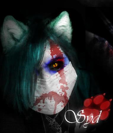 shidoni-the-wolf's Profile Picture