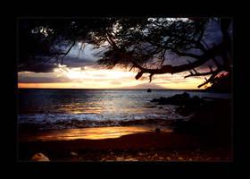 Golden Maui by stotty