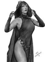 Raven Art by Rafaschneider2016art