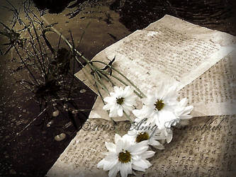 Letters To God. by Make-A-Wish