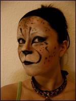 Cheetah by DDamgaard