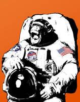 StreetArt 01: Astrochimp by skull