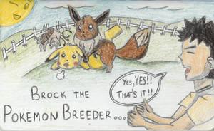 Pokemon Breeding ... by LadyEboshi3