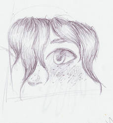 Winter Close-up Sketch by Pewcia