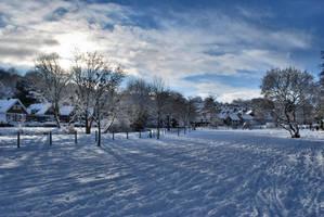 Frozen Park by Deus-est-femina