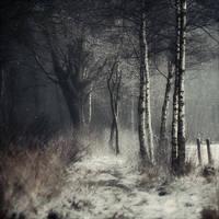 Winter Tale by Oer-Wout