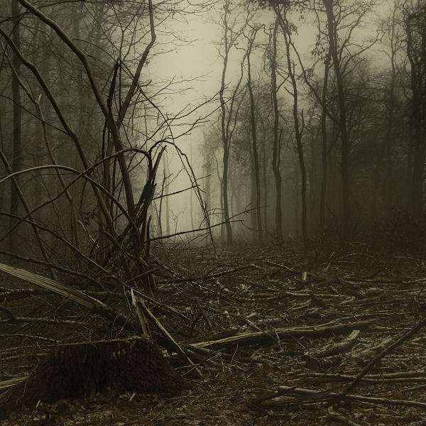Spirits Sigh by Oer-Wout