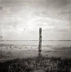 Alone by Lucasricart