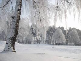 Winter dreams by feainne-stock