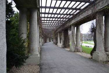Columns by feainne-stock