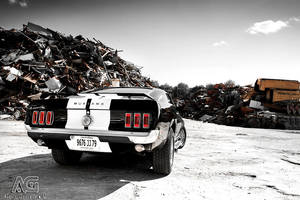 Mustang by alexisgoure