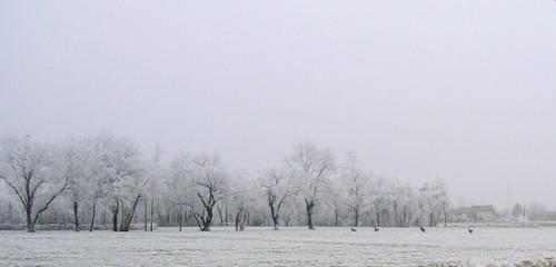 Cold winter by Mavricot