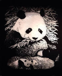 Panda scratchboard :3 by MMOAngeM