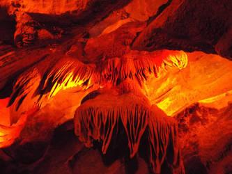 American Eagle Formation by Parrotmecium