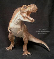 Tyrannosaurus rex 1/15 scale by GalileoN