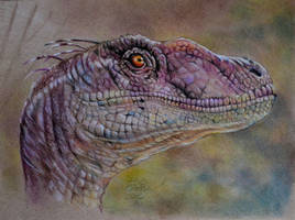 Fun with Raptors by MrEyeCandy66