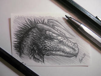 Drace Mini Sketch by LeviaDraconia