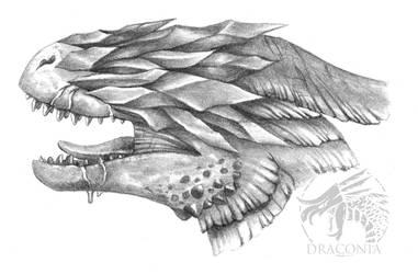 Draconia - The Marked Ones by LeviaDraconia
