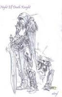 Night Elf Death Knight by atryl
