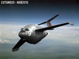 Sonderflugzeug 9 by CUTANGUS