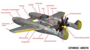 Model 128 B exposed by CUTANGUS
