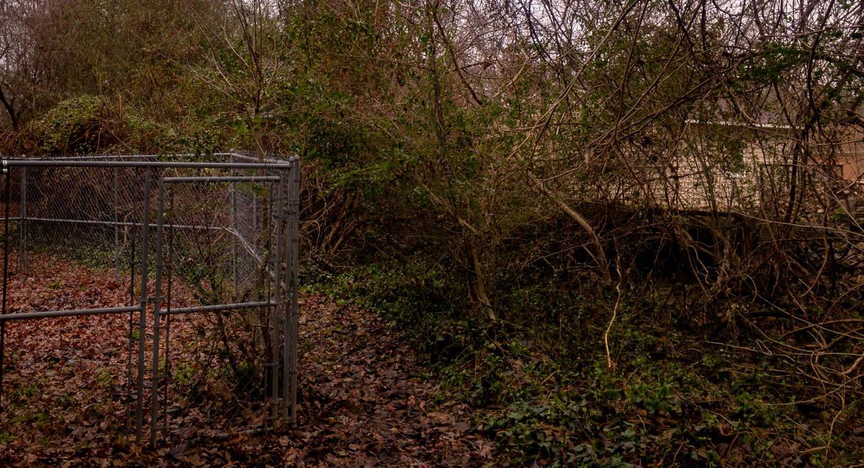 Caged Overgrowth by TheDarkEnigma