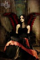 Dark Wings. by ThisBleedingRose