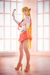 In the name of the Venus, I'll PunIsh You! by LoveSenshi