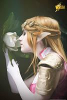 [The Legend of Zelda] Memories by YunaB-Rabbit