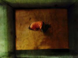 lonely by basemsamir