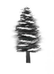 Winter Tree Practice by merthurandbeatles