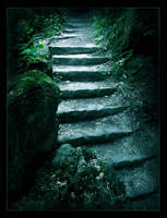 Pathway in the dark by Aliisza