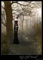 Into the Woods by drabbyrose