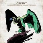 Augurey by SzokeKissMarton