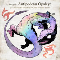 Antipodean Opaleye by SzokeKissMarton