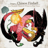 Chinese Fireball by SzokeKissMarton