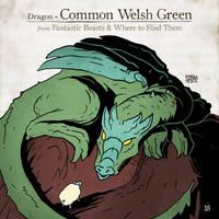 Common Welsh Green by SzokeKissMarton