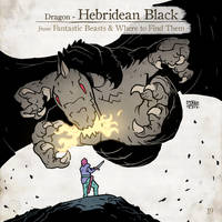 Hebridean Black by SzokeKissMarton