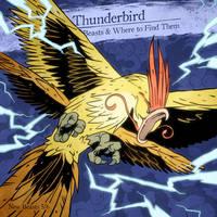 THUNDERBIRD by SzokeKissMarton