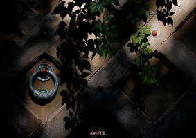 HIDDEN RING by ANOZER