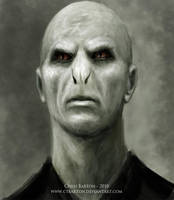 Voldemort by Ctbarton