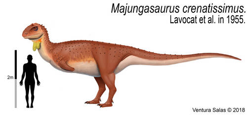 Majungasaurus crenatissimus. by VenturaSalas